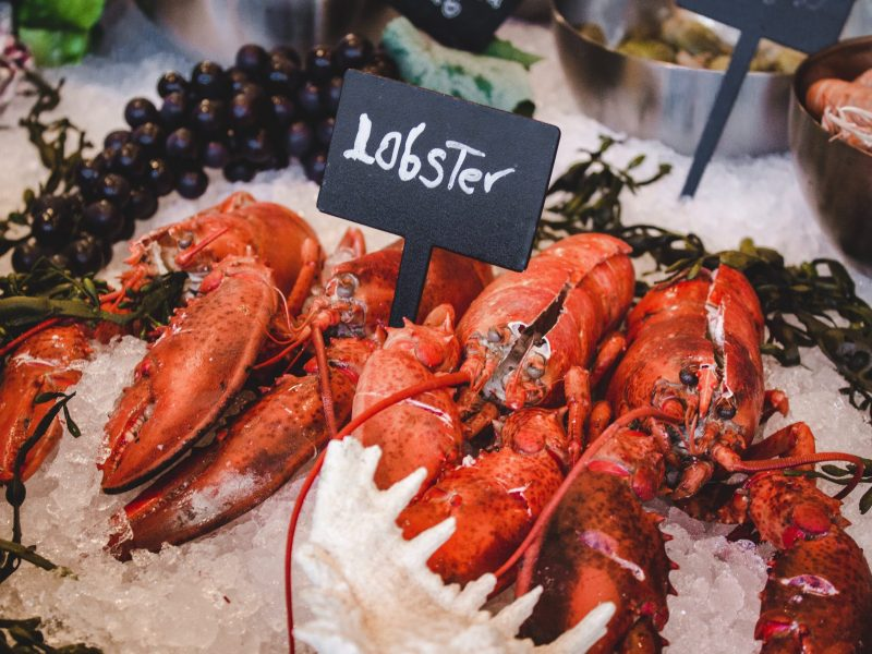 lobster and shellfish allergy